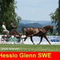 Hesslo Glenn SWE 5th Place CAI-A Altenfelden, Golden Wheel Trophy Golden Wheel CUP
